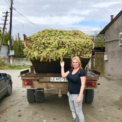 Экскурсия Kakheti